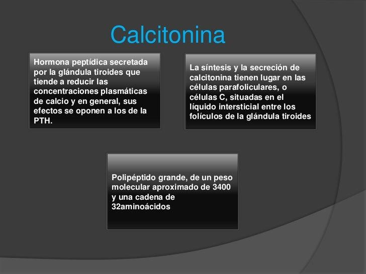 como acelerar el metabolismo para adelgazar opciones
