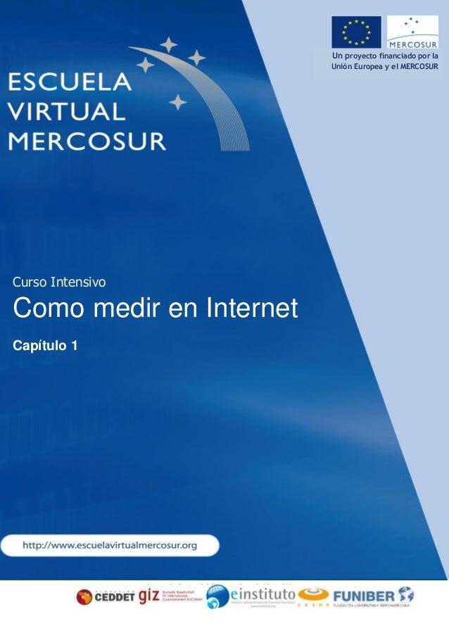 Consorcio Gestor del Proyecto Escuela Virtual Mercosur Un proyecto financiado por la Unión Europea y el MERCOSUR Curso Int...