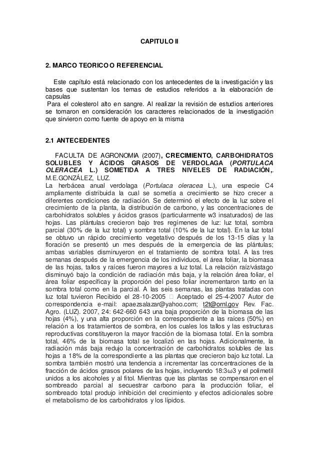 CAPITULO II 2. MARCO TEORICO O REFERENCIAL Este capítulo está relacionado con los antecedentes de la investigación y las b...