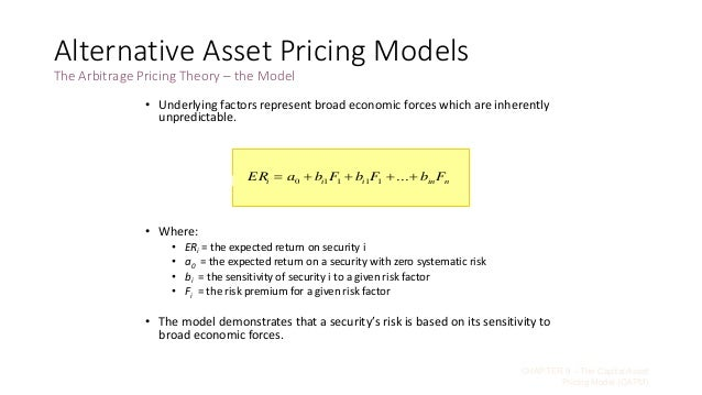 capital asset pricing model pdf