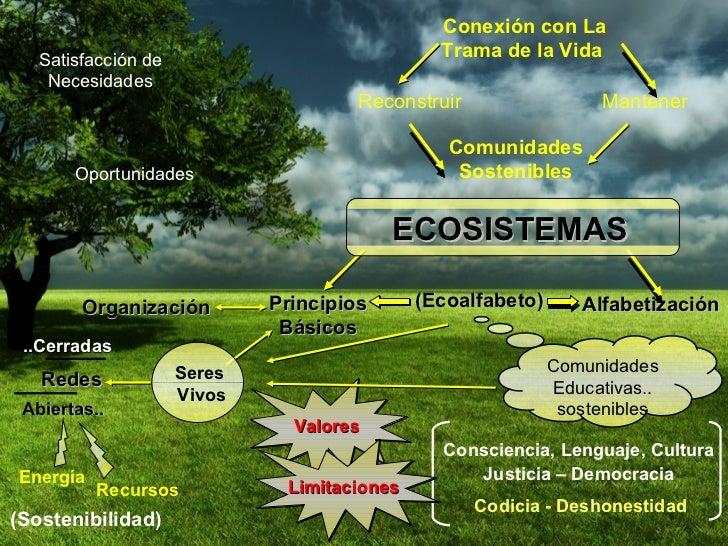 Conexión con La Trama de la Vida  Comunidades Educativas.. sostenibles (Sostenibilidad) Valores Organización Satisfacción ...