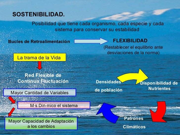 SOSTENIBILIDAD. Posibilidad que tiene cada organismo, cada especie y cada sistema para conservar su estabilidad  FLEXIBILI...