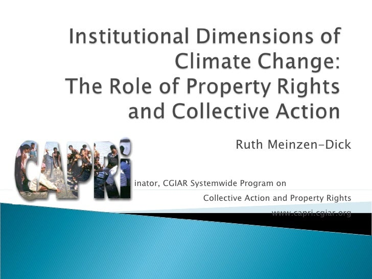 Ruth Meinzen-Dick Coordinator, CGIAR Systemwide Program on  Collective Action and Property Rights www.capri.cgiar.org