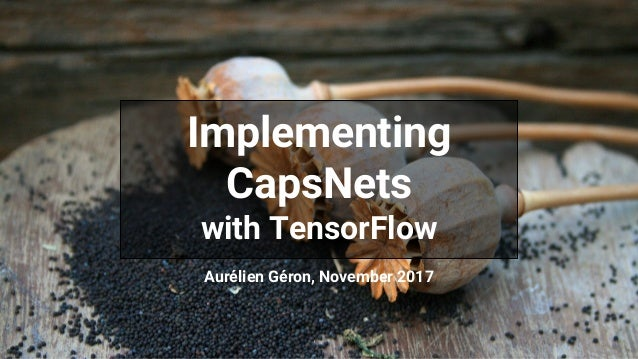 Implementing CapsNets with TensorFlow Aur�lien G�ron, November 2017