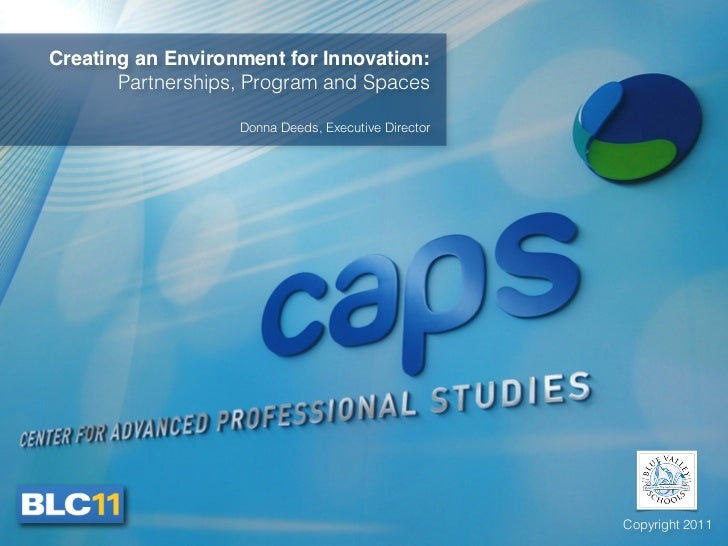 Creating an Environment for Innovation:       Partnerships, Program and Spaces                   Donna Deeds, Executive Di...