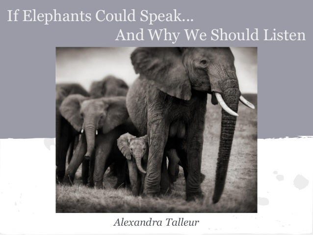 If Elephants Could Speak... And Why We Should Listen Alexandra Talleur