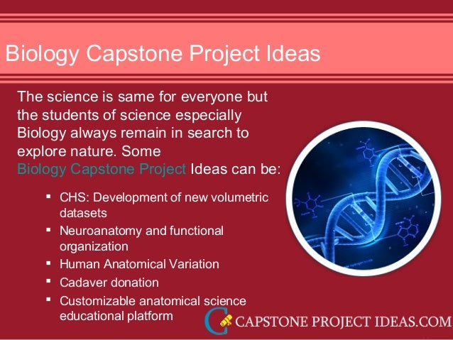 capstone project ideas for high school