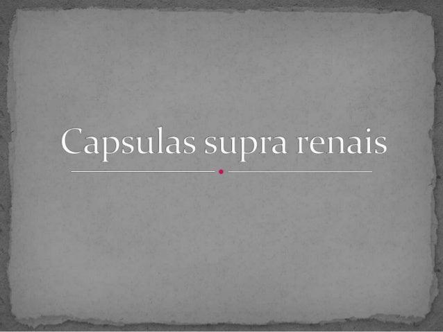 ∞Introdução ; ∞Desenvolvimento: - O que são as capsulas supra renais; - Localização da glândula; - Hormonas que produz; - ...