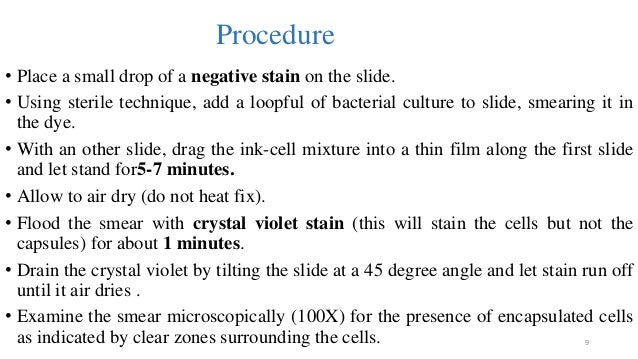 what is the purpose of crystal violet in the gram s stain procedure Mcb lab reports 1-6 teacher citron study play place these structures of the compound light microscope in the order.