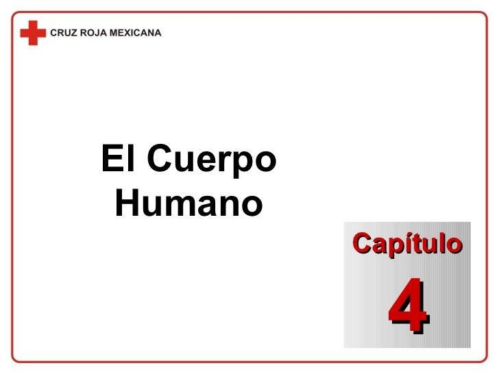 El Cuerpo Humano Capítulo 4