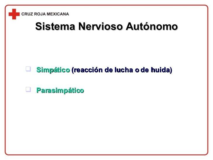 Sistema Nervioso Autónomo <ul><li>Simpático   (reacción de lucha o de huida) </li></ul><ul><li>Parasimpático </li></ul>