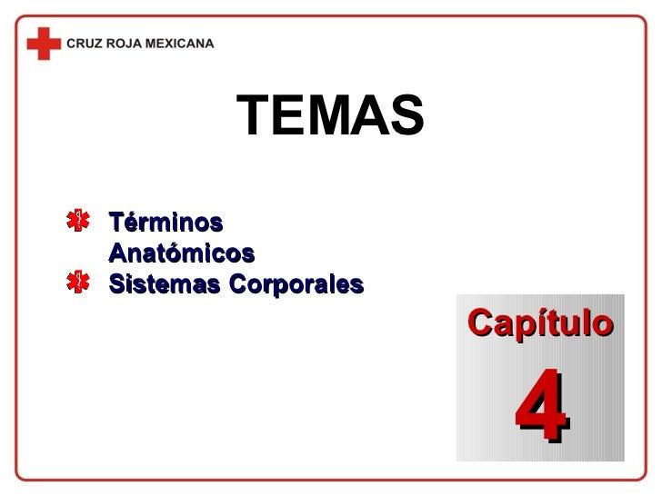 TEMAS <ul><li>Términos Anatómicos </li></ul><ul><li>Sistemas Corporales </li></ul>Capítulo 4