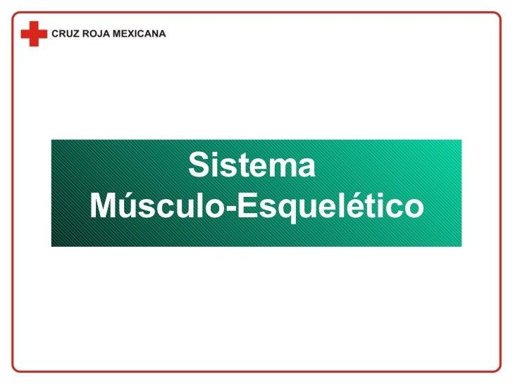 Sistema  Músculo-Esquelético