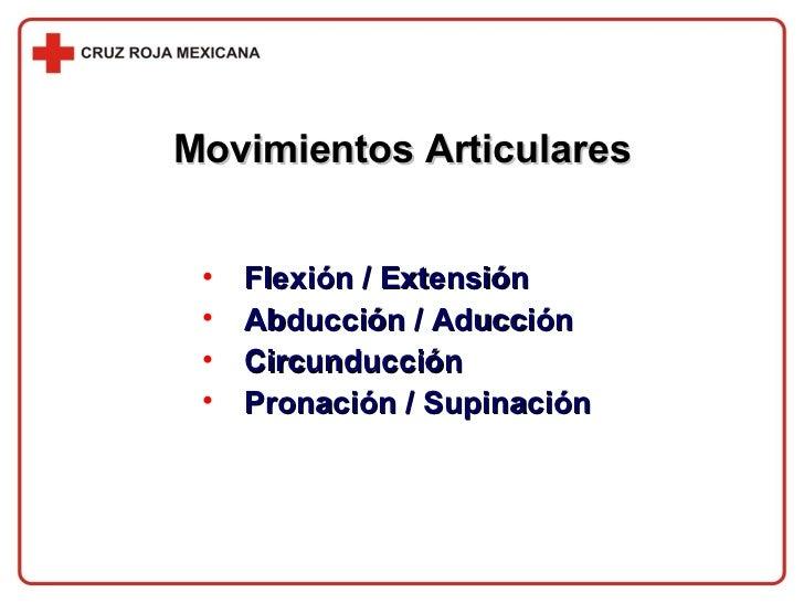 Movimientos Articulares <ul><li>Flexión / Extensión </li></ul><ul><li>Abducción / Aducción </li></ul><ul><li>Circunducción...