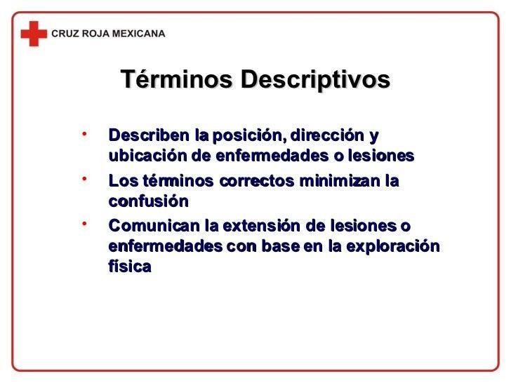 Términos Descriptivos <ul><li>Describen la posición, dirección y ubicación de enfermedades o lesiones </li></ul><ul><li>Lo...