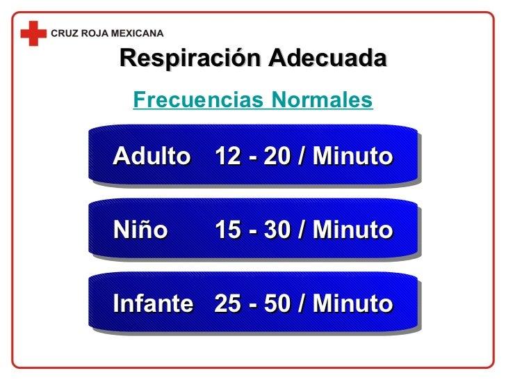 Respiración Adecuada Frecuencias Normales Adulto  12 - 20 / Minuto Niño  15 - 30 / Minuto Infante  25 - 50 / Minuto