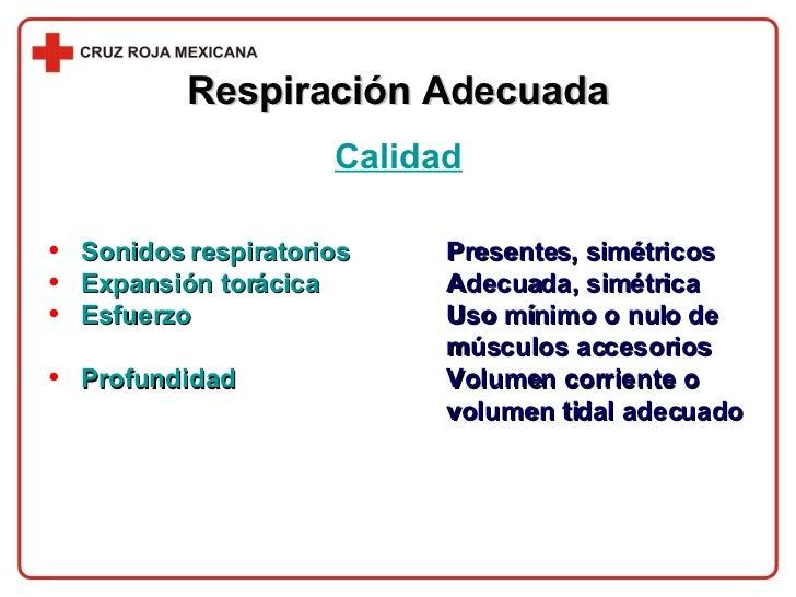 <ul><li>Sonidos respiratorios Presentes, simétricos </li></ul><ul><li>Expansión torácica Adecuada, simétrica </li></ul><ul...