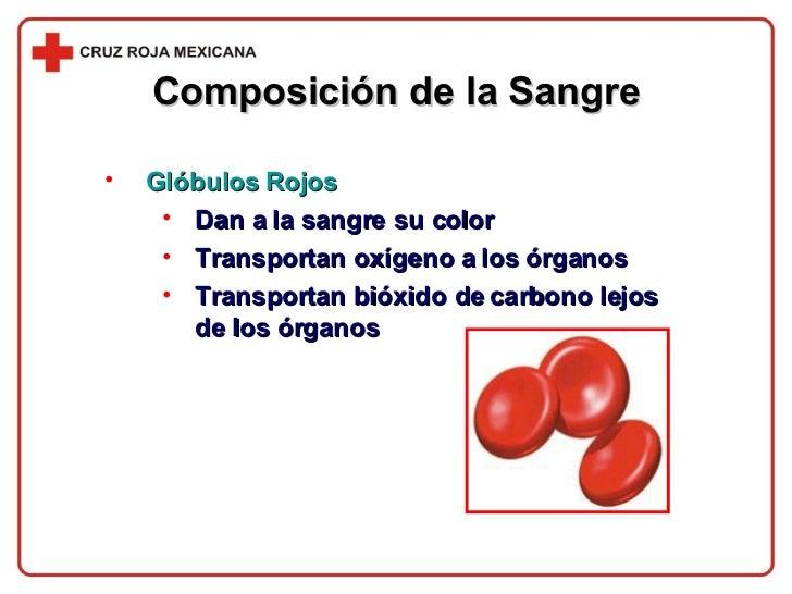 Composición de la Sangre <ul><li>Glóbulos Rojos </li></ul><ul><ul><li>Dan a la sangre su color </li></ul></ul><ul><ul><li>...