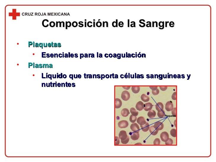 Composición de la Sangre <ul><li>Plaquetas </li></ul><ul><ul><li>Esenciales para la coagulación </li></ul></ul><ul><li>Pla...