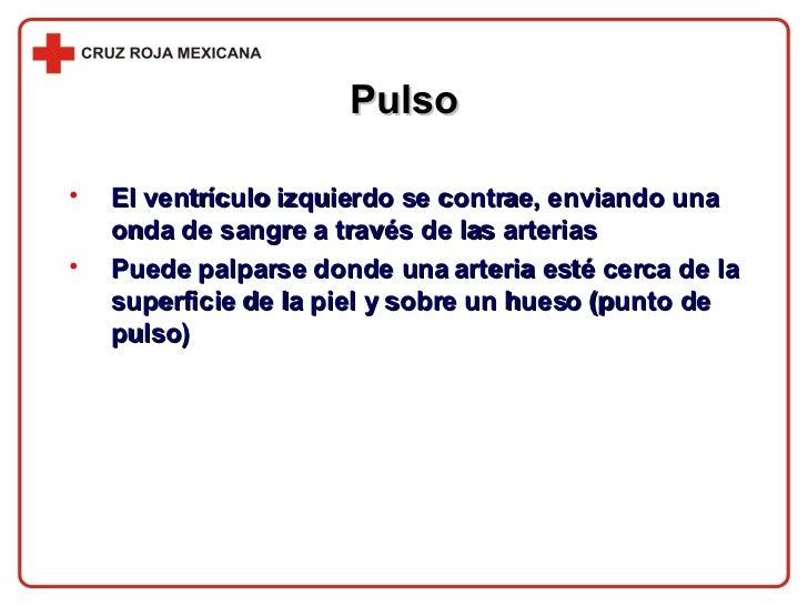 Pulso <ul><li>El ventrículo izquierdo se contrae, enviando una onda de sangre a través de las arterias </li></ul><ul><li>P...