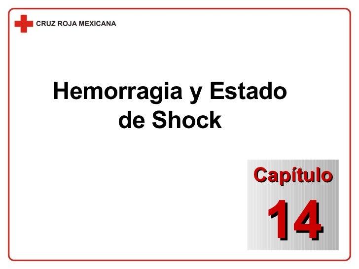 Hemorragia y Estado de Shock Capítulo 14
