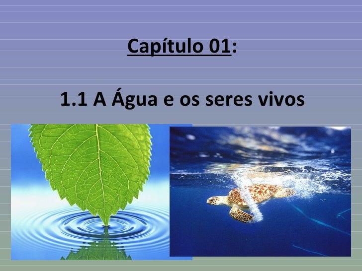 Capítulo 01:1.1 A Água e os seres vivos