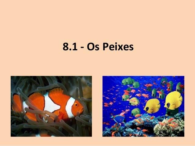 8.1 - Os Peixes