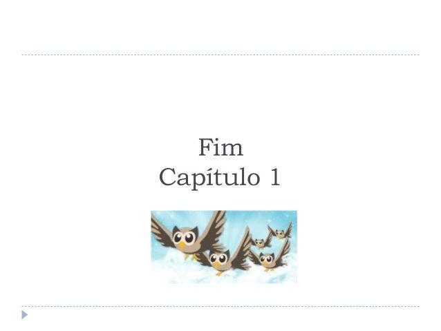 FimCapítulo 1