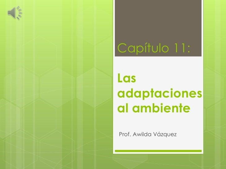 Capítulo 11:Lasadaptacionesal ambienteProf. Awilda Vázquez