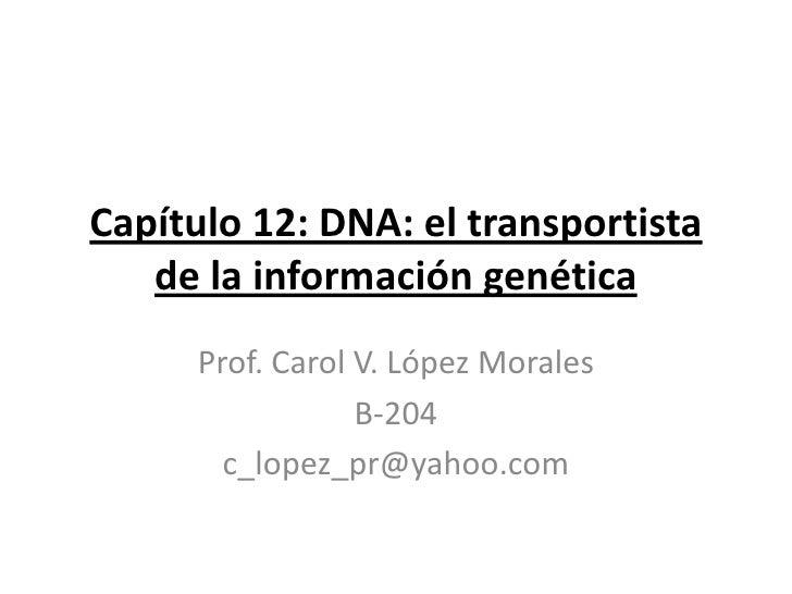 Capítulo 12: DNA: el transportista   de la información genética      Prof. Carol V. López Morales                  B-204  ...