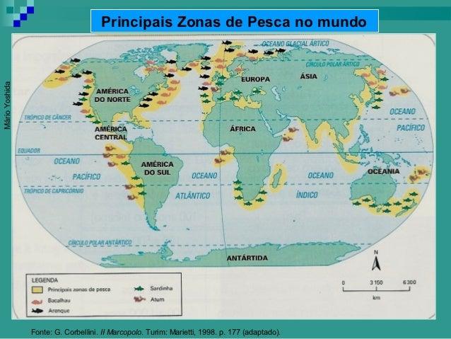 Principais Zonas de Pesca no mundoMário Yoshida                Fonte: G. Corbellini. II Marcopolo. Turim: Marietti, 1998. ...