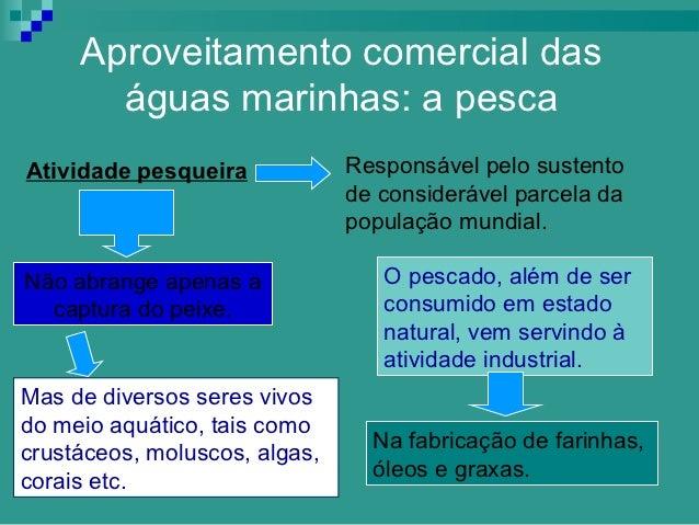 Aproveitamento comercial das       águas marinhas: a pescaAtividade pesqueira            Responsável pelo sustento        ...