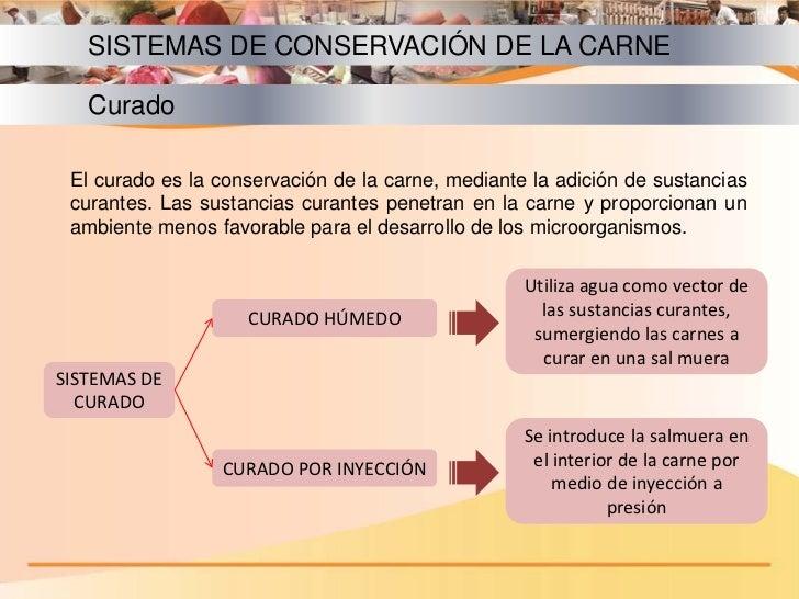 Cap tulo v c rnicos ii for Procesos de preelaboracion y conservacion en cocina pdf