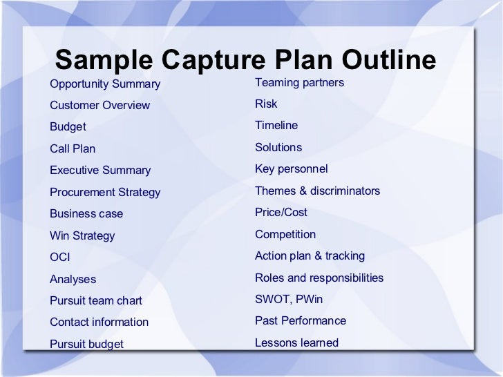 Sample business plan for government contractors