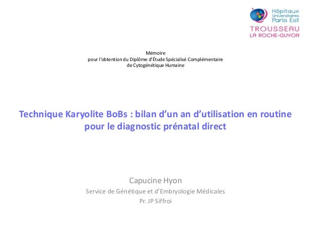 Technique Karyolite BoBs : bilan d'un an d'utilisation en routine pour le diagnostic prénatal direct Capucine Hyon Service...
