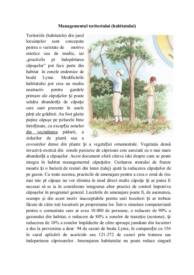 Managementul teritoriului (habitatului)Teritoriile (habitatele) din jurullocuinţelor sunt conceputepentru o varietate de  ...