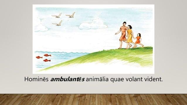 Hominēs ambulantēs animālia quae volant vident.