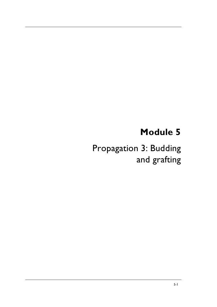Module 5 Propagation 3: Budding            and grafting                          5-1