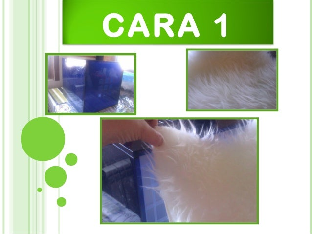 CARA 1