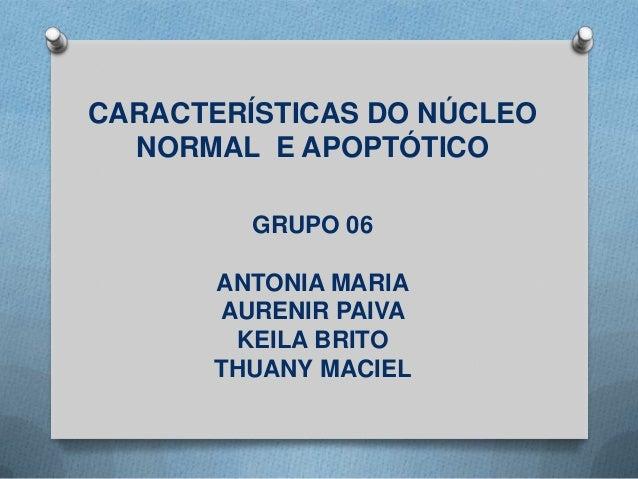 CARACTERÍSTICAS DO NÚCLEO NORMAL E APOPTÓTICO GRUPO 06 ANTONIA MARIA AURENIR PAIVA KEILA BRITO THUANY MACIEL
