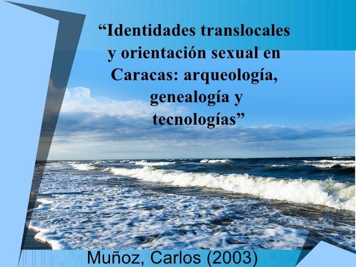 """Muñoz, Carlos (2003) """" Identidades translocales  y orientación sexual en  Caracas: arqueología,  genealogía y tecnologías"""""""