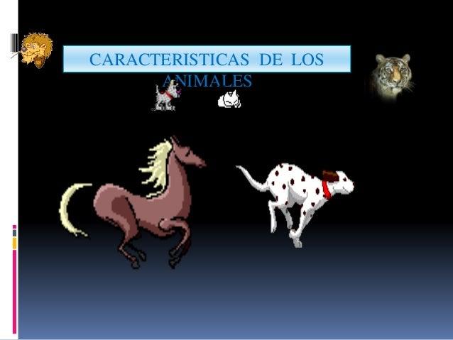 CARACTERISTICAS DE LOS ANIMALES