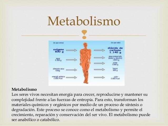 como acelerar el metabolismo para adelgazar simptoms