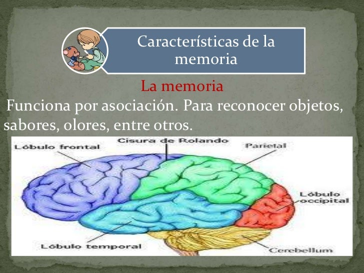 Caracteristicas de la memoria Slide 2