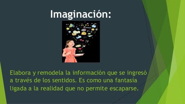 Elabora y remodela la información que se ingresó a través de los sentidos. Es como una fantasía ligada a la realidad que n...
