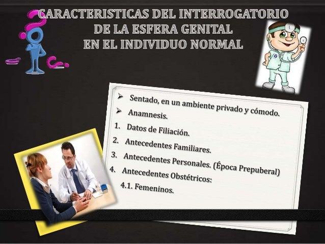 Caracteristicas del interrogatorio de la esfera genital en el individuo normal Slide 2
