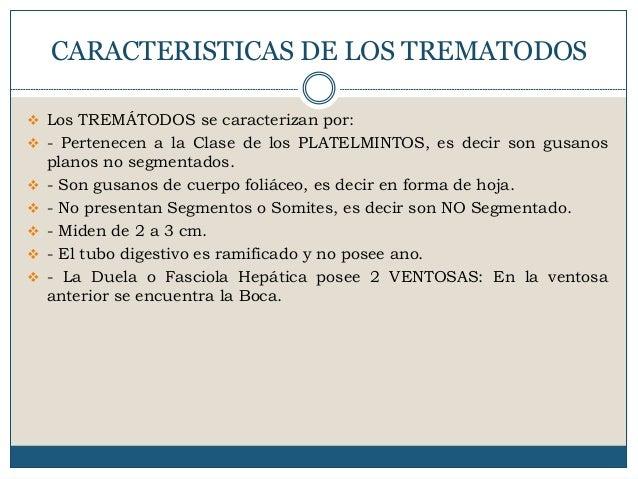 DEFINICION DE TREMATODOS DOWNLOAD