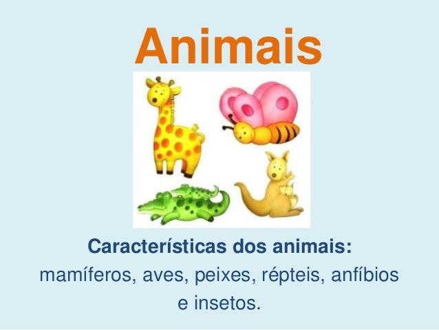 Características dos animais: mamíferos, aves, peixes, répteis, anfíbios e insetos. Animais