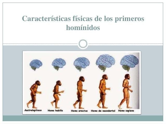 Características físicas de los primeros homínidos