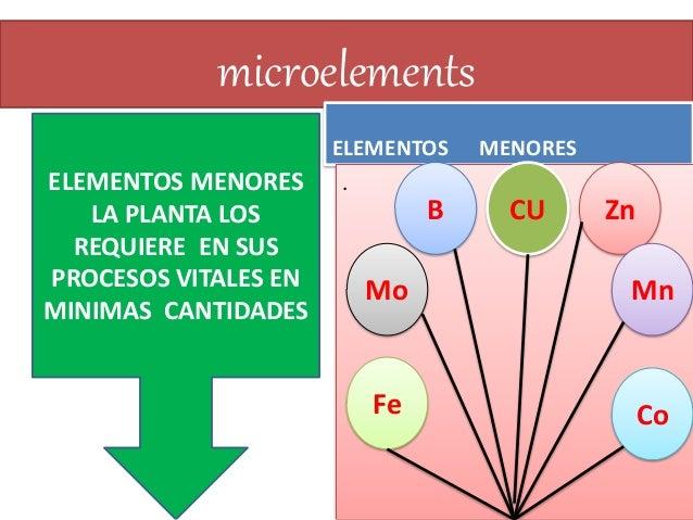 Caracteristicas quimicas en la formacion del suelo for Componentes quimicos del suelo